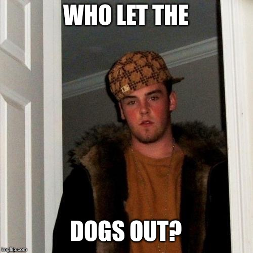Scumbag Steve Meme | WHO LET THE DOGS OUT? | image tagged in memes,scumbag steve,dog week,dead memes | made w/ Imgflip meme maker