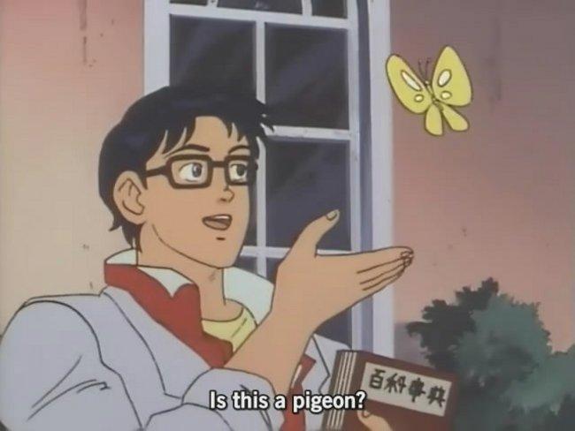 is this pigeon meme generator