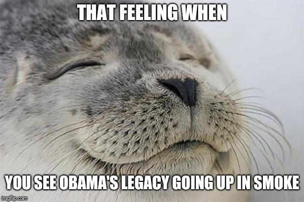 Satisfied Seal | THAT FEELING WHEN YOU SEE OBAMA'S LEGACY GOING UP IN SMOKE | image tagged in memes,satisfied seal,obama,obama legacy | made w/ Imgflip meme maker