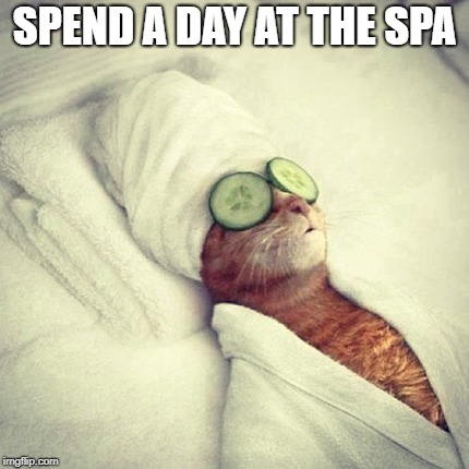 SPEND A DAY AT THE SPA | made w/ Imgflip meme maker