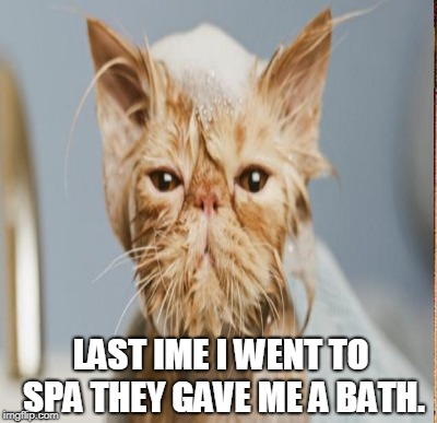 LAST IME I WENT TO SPA THEY GAVE ME A BATH. | made w/ Imgflip meme maker