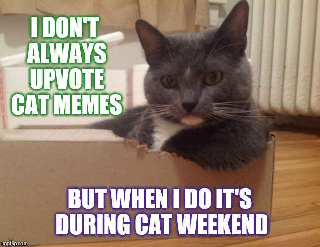"Submit your cat memes, tag them ""cat weekend"", and me, Landon_the_memer, 1forpeace, will upvote and comments on them! May 11-13 