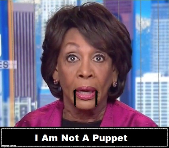 Pretty sure you are....... | image tagged in maxine waters,college liberal,stupid liberals,racist,nazis everywhere | made w/ Imgflip meme maker