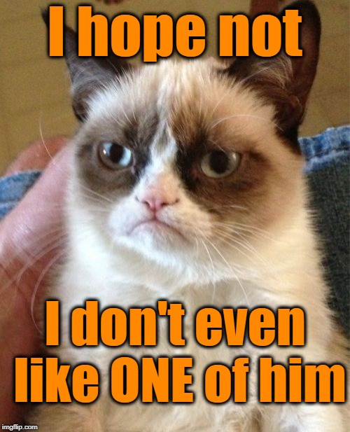 Grumpy Cat Meme | I hope not I don't even like ONE of him | image tagged in memes,grumpy cat | made w/ Imgflip meme maker