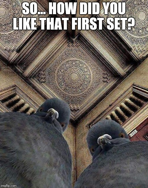 Pigeons Playing Ping Pong | SO... HOW DID YOU LIKE THAT FIRST SET? | image tagged in funk | made w/ Imgflip meme maker