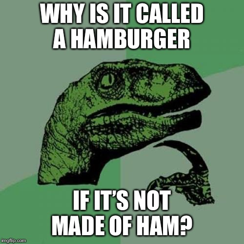 Philosoraptor Meme | WHY IS IT CALLED A HAMBURGER IF IT'S NOT MADE OF HAM? | image tagged in memes,philosoraptor | made w/ Imgflip meme maker
