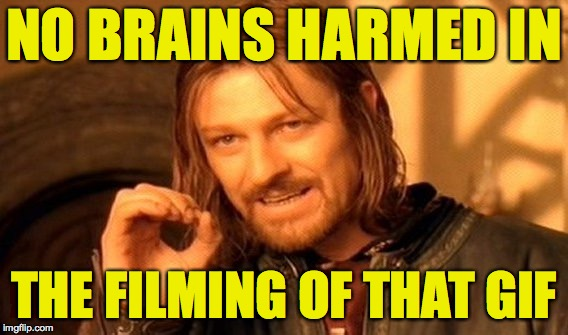 One Does Not Simply Meme | NO BRAINS HARMED IN THE FILMING OF THAT GIF | image tagged in memes,one does not simply | made w/ Imgflip meme maker