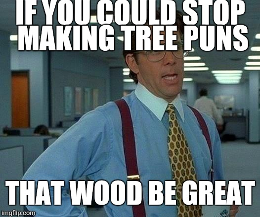 That Would Be Great Meme | IF YOU COULD STOP MAKING TREE PUNS THAT WOOD BE GREAT | image tagged in memes,that would be great | made w/ Imgflip meme maker