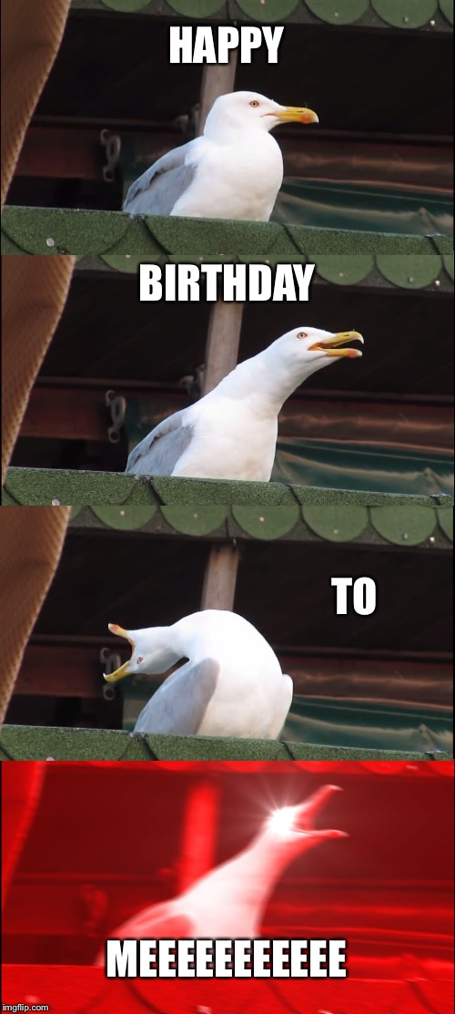 Inhaling Seagull Meme | HAPPY BIRTHDAY TO MEEEEEEEEEEE | image tagged in memes,inhaling seagull | made w/ Imgflip meme maker