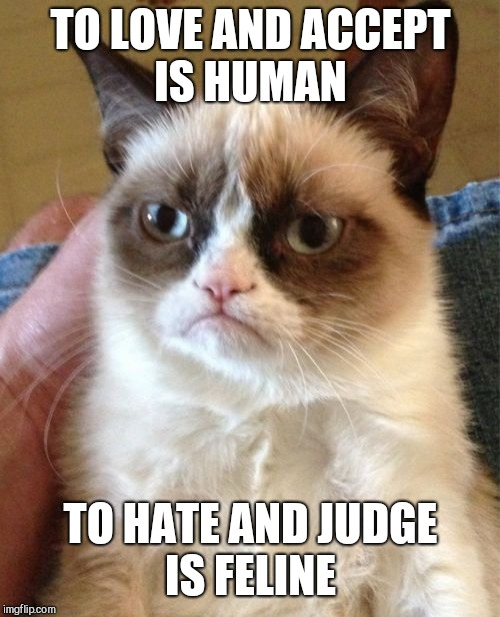 Grumpy Cat Meme | TO LOVE AND ACCEPT IS HUMAN TO HATE AND JUDGE IS FELINE | image tagged in memes,grumpy cat | made w/ Imgflip meme maker