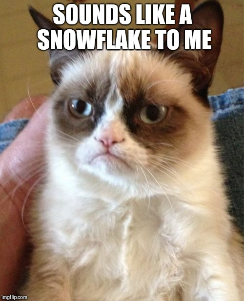 Grumpy Cat Meme | SOUNDS LIKE A SNOWFLAKE TO ME | image tagged in memes,grumpy cat | made w/ Imgflip meme maker