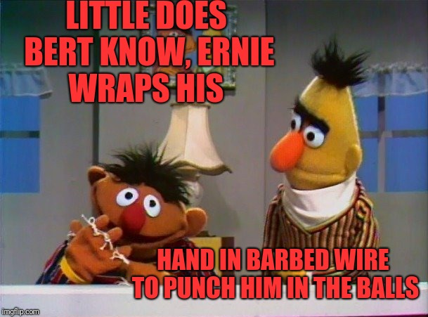 Ernie got cold a.f. | LITTLE DOES BERT KNOW, ERNIE WRAPS HIS HAND IN BARBED WIRE TO PUNCH HIM IN THE BALLS | image tagged in funny,memes,dank,bert and ernie,falcon punch,check yourself | made w/ Imgflip meme maker