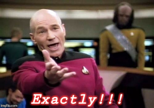 Picard Wtf Meme | Exactly!!! | image tagged in memes,picard wtf | made w/ Imgflip meme maker