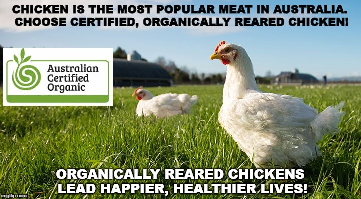 CHICKEN IS THE MOST POPULAR MEAT IN AUSTRALIA. CHOOSE CERTIFIED, ORGANICALLY REARED CHICKEN! ORGANICALLY REARED CHICKENS LEAD HAPPIER, HEALT | image tagged in chicken welfare,animal welfae,organic,organic chicken | made w/ Imgflip meme maker