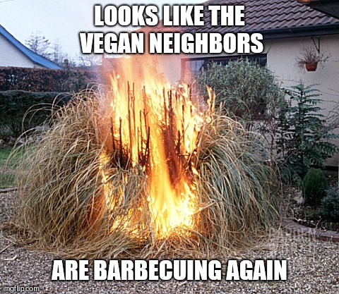 LOOKS LIKE THE VEGAN NEIGHBORS ARE BARBECUING AGAIN | image tagged in vegan barbecue,veganism | made w/ Imgflip meme maker