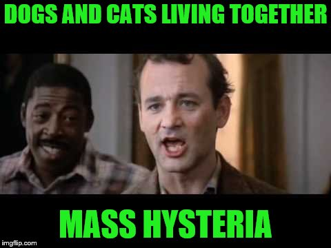 DOGS AND CATS LIVING TOGETHER MASS HYSTERIA | made w/ Imgflip meme maker