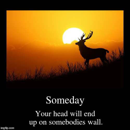Someday | Your head will end up on somebodies wall. | image tagged in funny,demotivationals | made w/ Imgflip demotivational maker