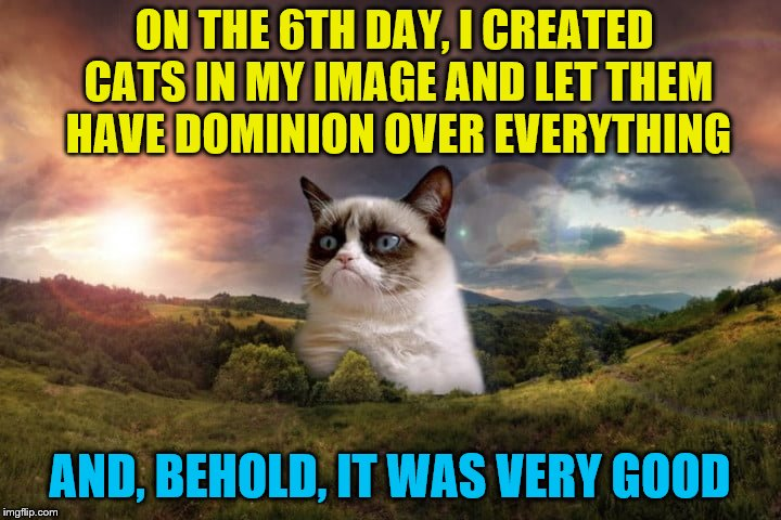 Praise be to Grumpy Cat! Cat Weekend, May 11-13, a Landon_the_memer, 1forpeace, & JBmemegeek event! | ON THE 6TH DAY, I CREATED CATS IN MY IMAGE AND LET THEM HAVE DOMINION OVER EVERYTHING AND, BEHOLD, IT WAS VERY GOOD | image tagged in memes,grumpy cat,creation,cat weekend,cats | made w/ Imgflip meme maker