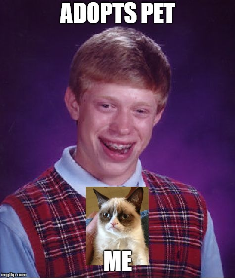 Bad Luck Brian Meme | ADOPTS PET ME | image tagged in memes,bad luck brian | made w/ Imgflip meme maker