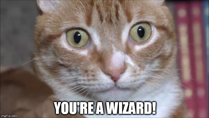 YOU'RE A WIZARD! | made w/ Imgflip meme maker