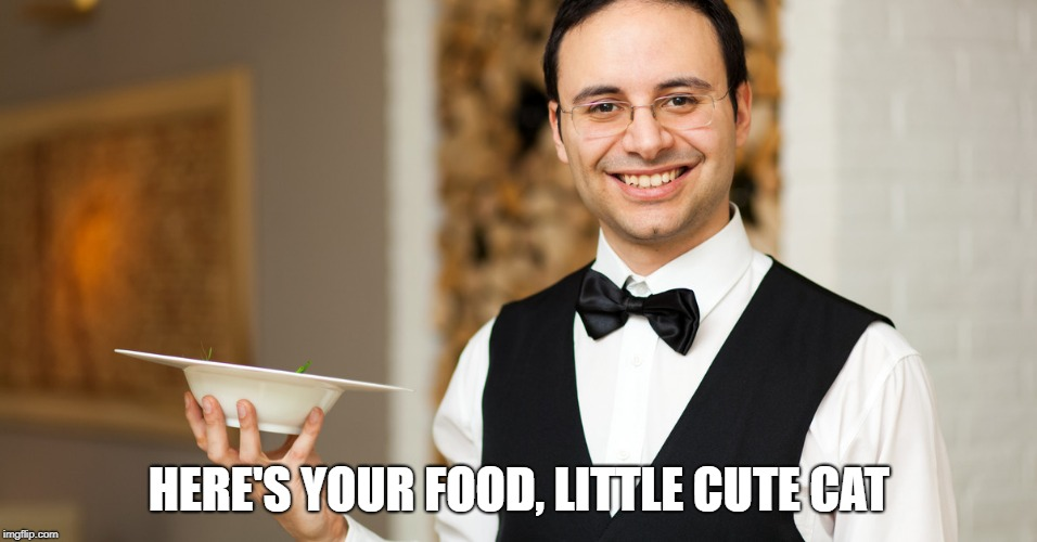 HERE'S YOUR FOOD, LITTLE CUTE CAT | made w/ Imgflip meme maker