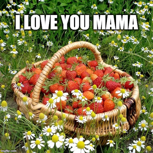 I LOVE YOU MAMA | image tagged in mothers day,i love you,strawberries,basket,love,lovewins | made w/ Imgflip meme maker