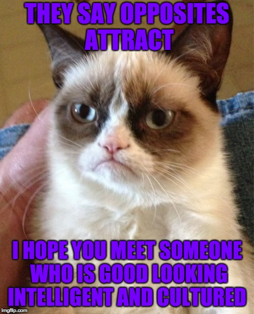 Grumpy Cat Meme | THEY SAY OPPOSITES ATTRACT I HOPE YOU MEET SOMEONE WHO IS GOOD LOOKING INTELLIGENT AND CULTURED | image tagged in memes,grumpy cat | made w/ Imgflip meme maker