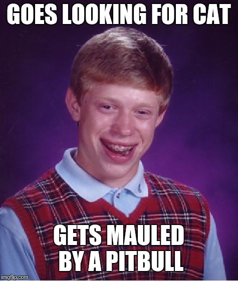 Bad Luck Brian Meme | GOES LOOKING FOR CAT GETS MAULED BY A PITBULL | image tagged in memes,bad luck brian | made w/ Imgflip meme maker