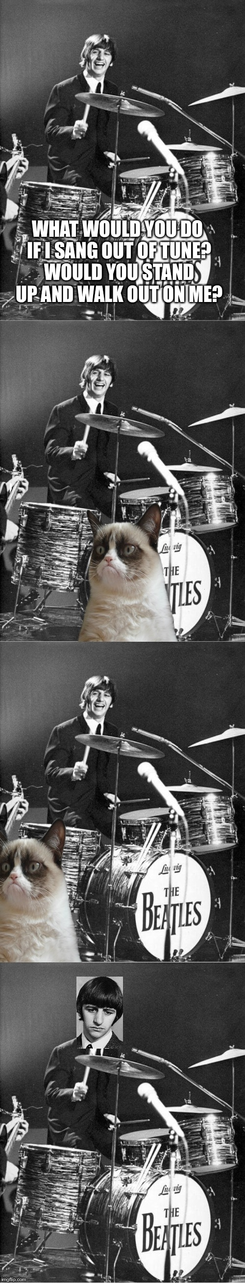 Ringo plays for grumpy cat | WHAT WOULD YOU DO IF I SANG OUT OF TUNE? WOULD YOU STAND UP AND WALK OUT ON ME? | image tagged in the beatles,grumpy cat | made w/ Imgflip meme maker