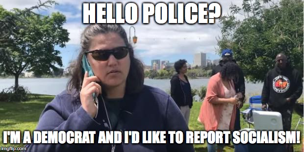 HELLO POLICE? I'M A DEMOCRAT AND I'D LIKE TO REPORT SOCIALISM! | image tagged in politics,socialism,democrats | made w/ Imgflip meme maker