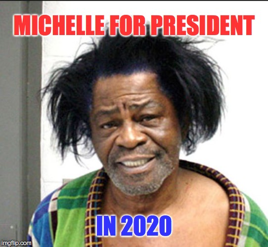 Uh, No... | MICHELLE FOR PRESIDENT IN 2020 | image tagged in james brown mugshot,michelle obama | made w/ Imgflip meme maker