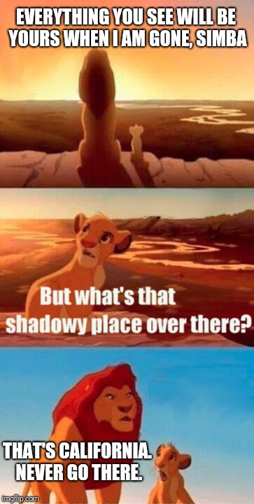 Simba Shadowy Place Meme | EVERYTHING YOU SEE WILL BE YOURS WHEN I AM GONE, SIMBA THAT'S CALIFORNIA. NEVER GO THERE. | image tagged in memes,simba shadowy place | made w/ Imgflip meme maker