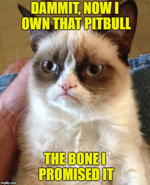 Grumpy Cat Meme | DAMMIT, NOW I OWN THAT PITBULL THE BONE I PROMISED IT | image tagged in memes,grumpy cat | made w/ Imgflip meme maker