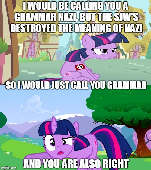 And you are also right | I WOULD BE CALLING YOU A GRAMMAR NAZI, BUT THE SJW'S DESTROYED THE MEANING OF NAZI SO I WOULD JUST CALL YOU GRAMMAR AND YOU ARE ALSO RIGHT | image tagged in my little pony,grammar nazi | made w/ Imgflip meme maker