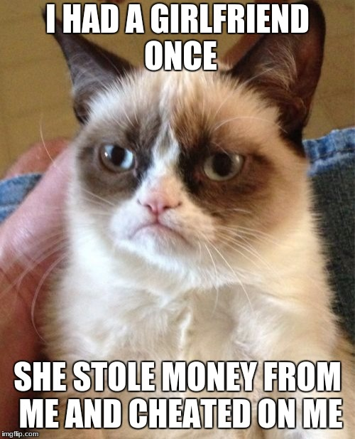 Grumpy Cat Meme | I HAD A GIRLFRIEND ONCE SHE STOLE MONEY FROM ME AND CHEATED ON ME | image tagged in memes,grumpy cat | made w/ Imgflip meme maker