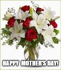 HAPPY  MOTHER'S DAY! | image tagged in flowers | made w/ Imgflip meme maker