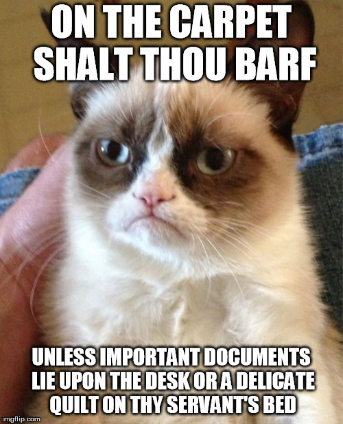 Grumpy Cat Meme | ON THE CARPET SHALT THOU BARF UNLESS IMPORTANT DOCUMENTS LIE UPON THE DESK OR A DELICATE QUILT ON THY SERVANT'S BED | image tagged in memes,grumpy cat | made w/ Imgflip meme maker