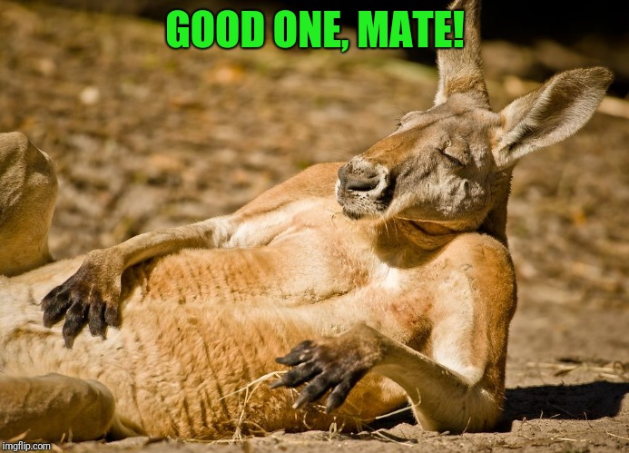 Relaxed dude | GOOD ONE, MATE! | image tagged in relaxed dude | made w/ Imgflip meme maker