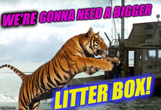 Cat Weekend, May 11-13, a Landon_the_memer, 1forpeace, & JBmemegeek event! | WE'RE LITTER BOX! | image tagged in jaws,cat weekend,tiger,animal,funny,memes | made w/ Imgflip meme maker