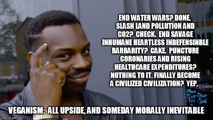 Roll Safe Think About It Meme | END WATER WARS? DONE. SLASH LAND POLLUTION AND C02?  CHECK.  END SAVAGE INHUMANE HEARTLESS INDEFENSINBLE BARBARITY?  CAKE.  PUNCTURE CORONAR | image tagged in memes,roll safe think about it | made w/ Imgflip meme maker