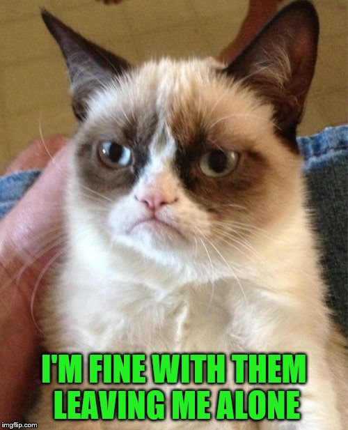 Grumpy Cat Meme | I'M FINE WITH THEM LEAVING ME ALONE | image tagged in memes,grumpy cat | made w/ Imgflip meme maker