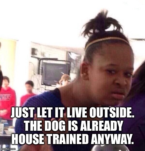 Black Girl Wat Meme | JUST LET IT LIVE OUTSIDE. THE DOG IS ALREADY HOUSE TRAINED ANYWAY. | image tagged in memes,black girl wat | made w/ Imgflip meme maker
