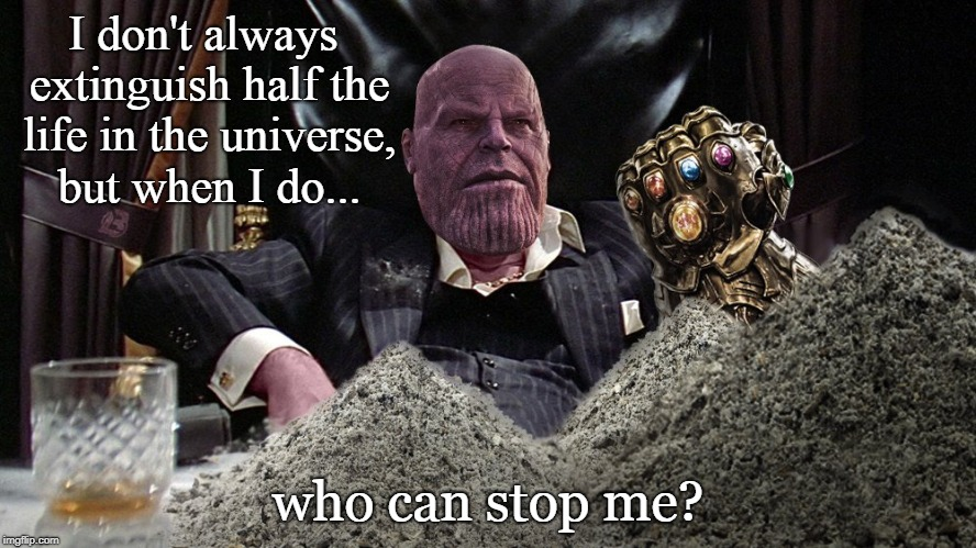 Who can stop me? | I don't always extinguish half the life in the universe, but when I do... who can stop me? | image tagged in thanos,avengers infinity war,marvel,the most interesting man in the world,funny | made w/ Imgflip meme maker
