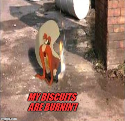 MY BISCUITS ARE BURNIN'! | made w/ Imgflip meme maker