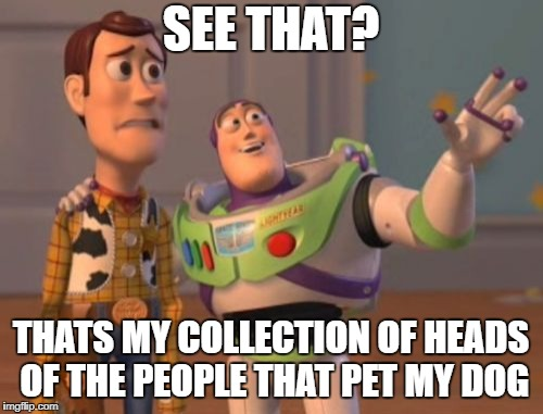 X, X Everywhere Meme | SEE THAT? THATS MY COLLECTION OF HEADS OF THE PEOPLE THAT PET MY DOG | image tagged in memes,x,x everywhere,x x everywhere | made w/ Imgflip meme maker
