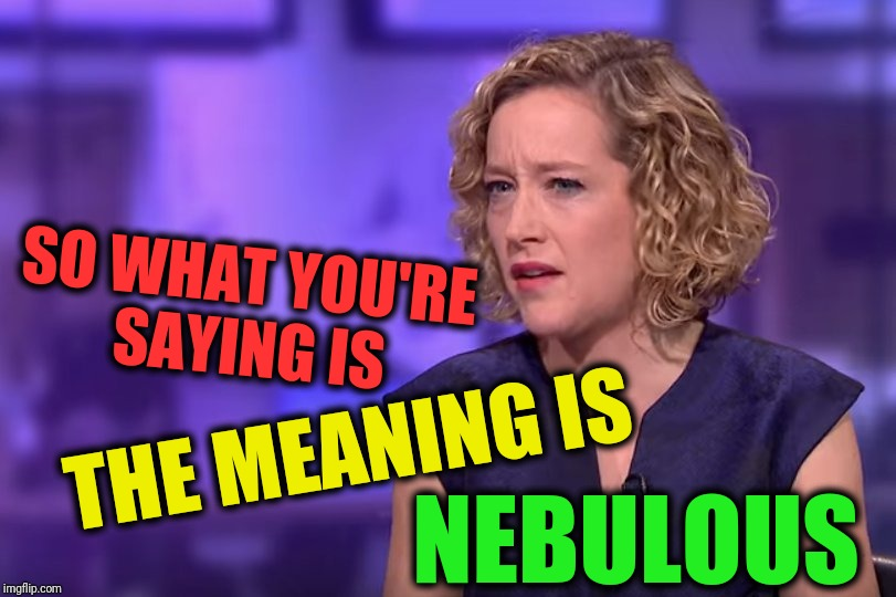 SO WHAT YOU'RE SAYING IS NEBULOUS THE MEANING IS | image tagged in jordan peterson - so what you're saying | made w/ Imgflip meme maker