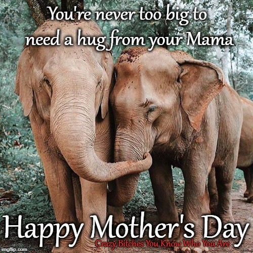 You're never too big to need a hug from your Mama Crazy B**ches You Know Who You Are Happy Mother's Day | image tagged in mothers day,elephant | made w/ Imgflip meme maker