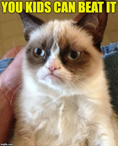 Grumpy Cat Meme | YOU KIDS CAN BEAT IT | image tagged in memes,grumpy cat | made w/ Imgflip meme maker