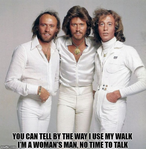 Whether You're a Brother or Whether You're a Mother | YOU CAN TELL BY THE WAY I USE MY WALK I'M A WOMAN'S MAN, NO TIME TO TALK | image tagged in bee gees,memes | made w/ Imgflip meme maker