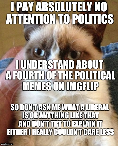 Grumpy Cat Meme | I PAY ABSOLUTELY NO ATTENTION TO POLITICS I UNDERSTAND ABOUT A FOURTH OF THE POLITICAL MEMES ON IMGFLIP SO DON'T ASK ME WHAT A LIBERAL IS OR | image tagged in memes,grumpy cat | made w/ Imgflip meme maker